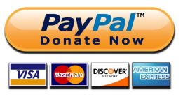 PayPal_Donate_Button_icon